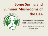 Spring and Summer Mushrooms of the GTA PDF