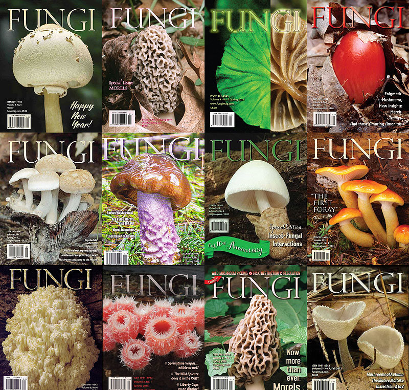 Fungi Magazine covers
