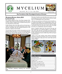 Cover of Mycelium vol. 40 no. 3
